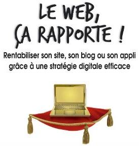 rentabiliser site web thibault vincent internet
