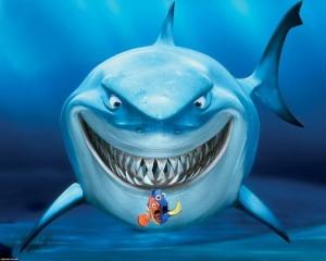 dents requin animal entreprise critique avis