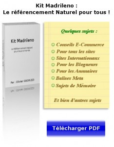 kit madrileno guide seo gratuity