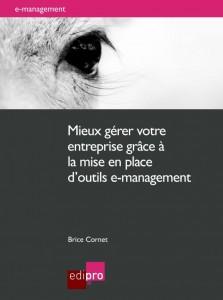 management livre brice cornet entreprise