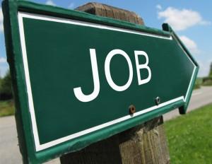 emploi recherche job