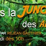 Dans La Jungle des Affaires